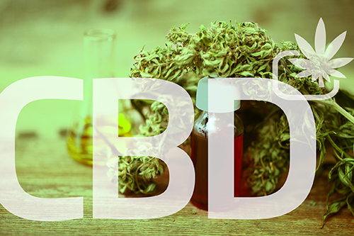 cbd freel web